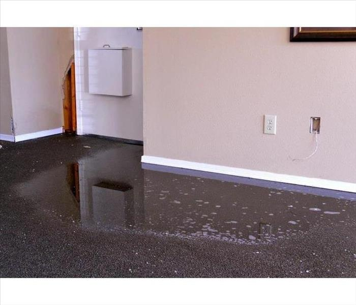 Standing water on carpet of a room