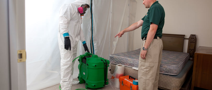 Baton Rouge, LA mold removal process